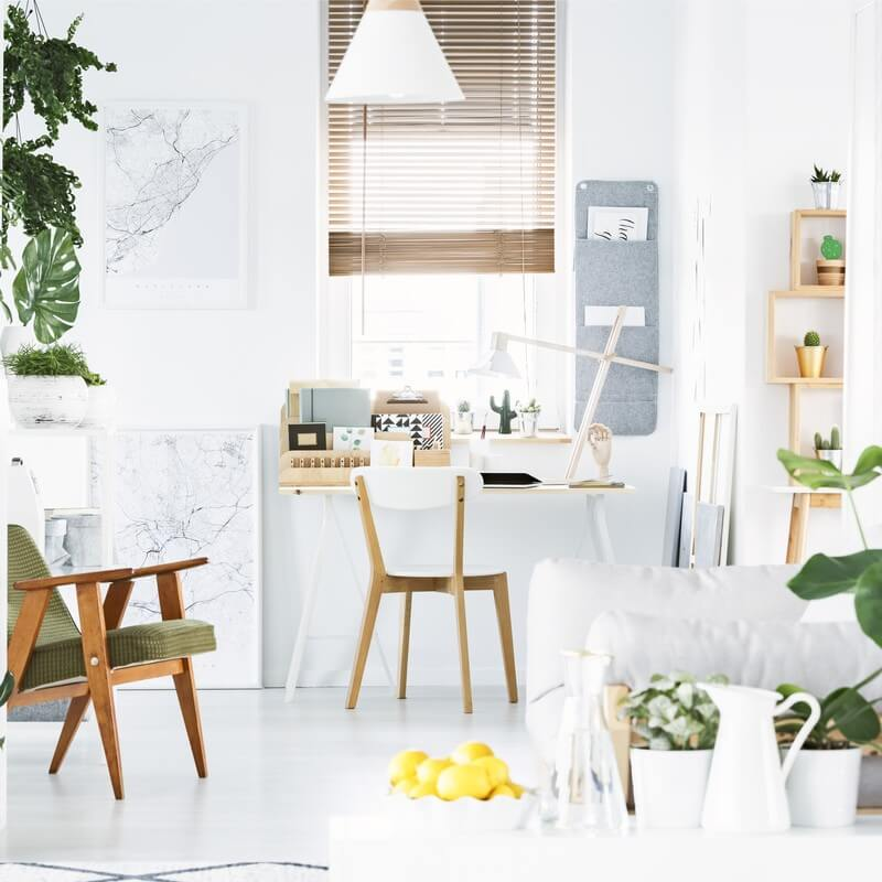 Tips for Home Office Design - Plants
