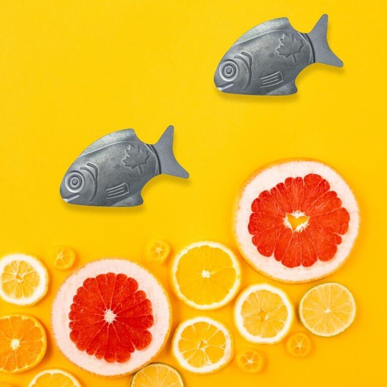 Boosting Iron Levels, One Fish at a Time - Orange
