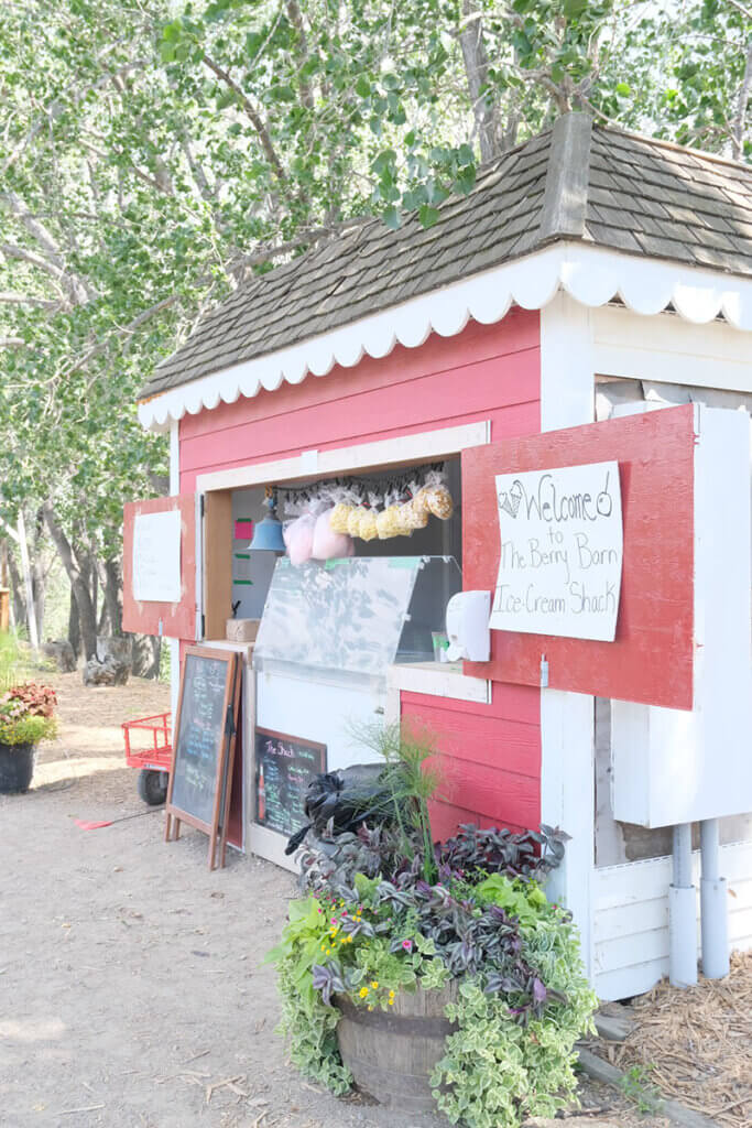 The Berry Barn in Saskatoon, Sask is a visitor's paradise