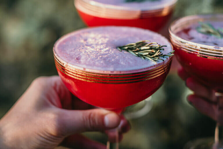 saskatoon-berry-bourbon-sour-recipe