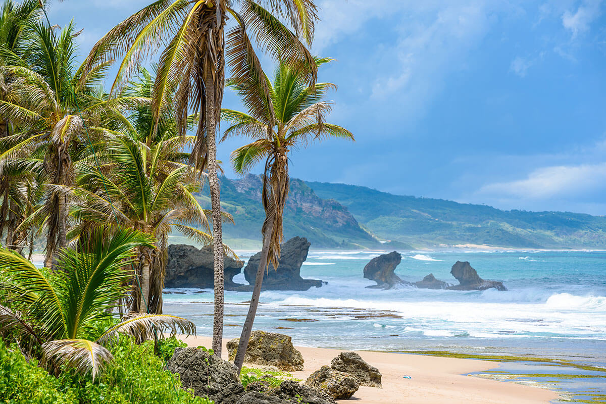 Rock formation on the beach of Bathsheba, East Coast of Barbados, one of Toast's islands in the sun