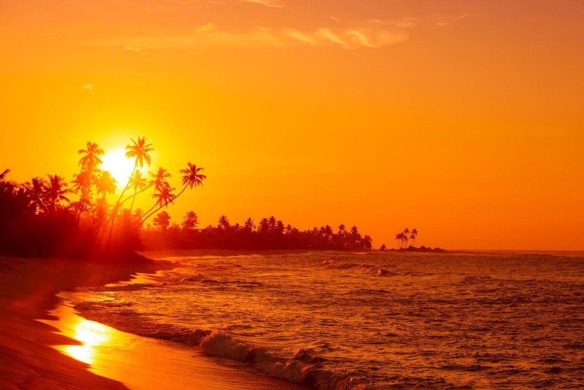 An orange Jamaican sunset along a beach with plam trees in the background, one of Jamaica's one-love treasures
