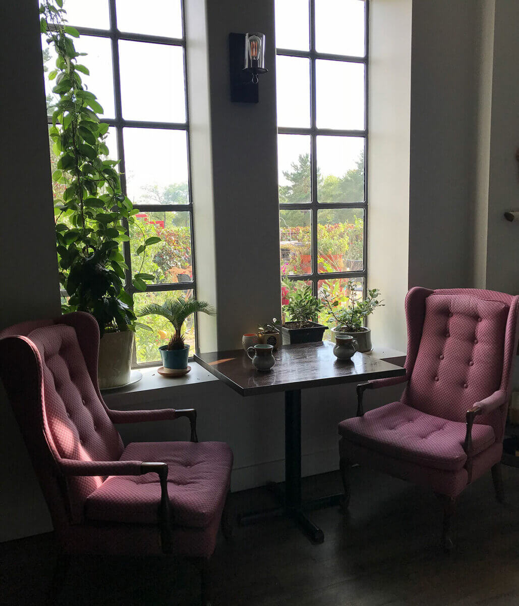 2 pink chairs beside a window ready for afternoon tea, part of the Regina February City Guide