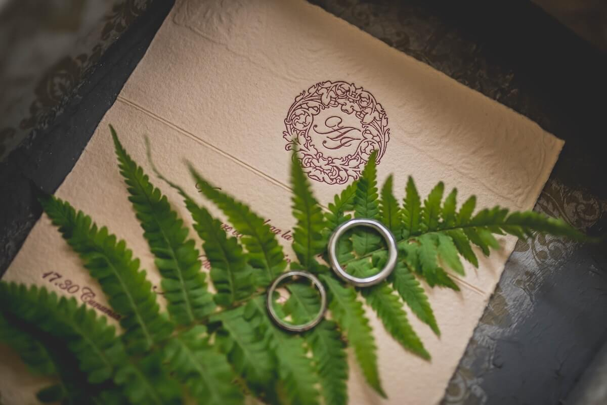 2 wedding rings on a leaf promoting a sustainable COVID wedding