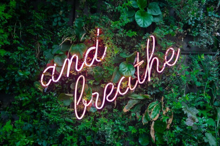 and breathe written in pink neon lights on a green leafy background