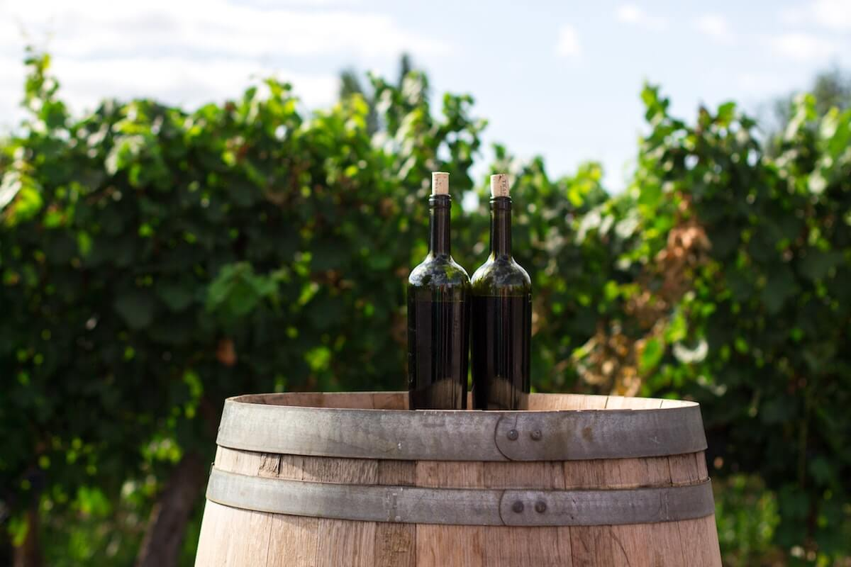 2 bottles of wine on an oak cask outside at a winery, samples of italian & french wines