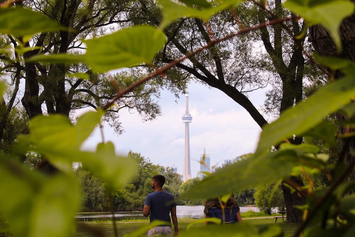 trees and greenery in the foreground with Toronto CN tower in background