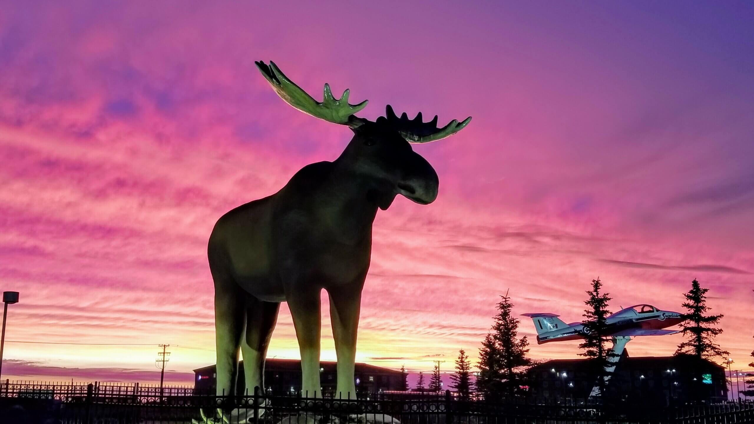 Mac the Moose & a tutor jet at sunset, fun times in moose jaw