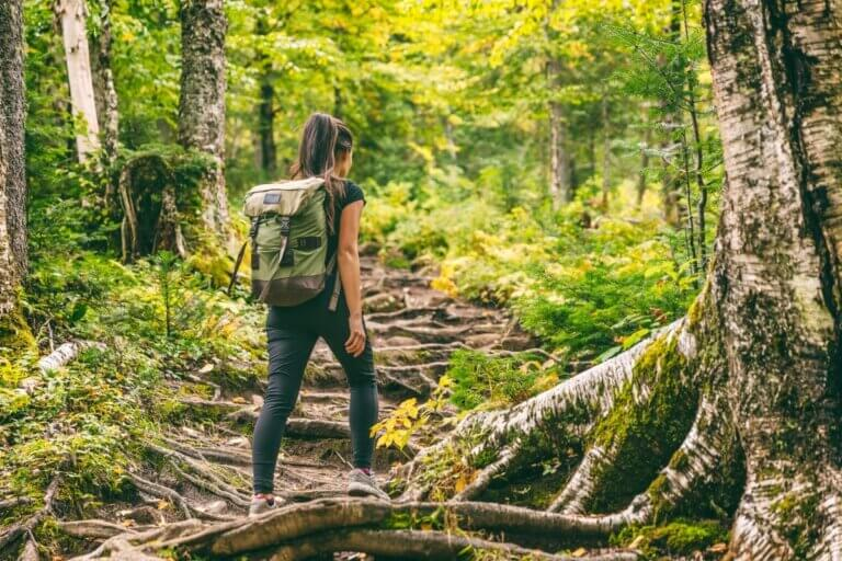 girl hiking in lush green forest