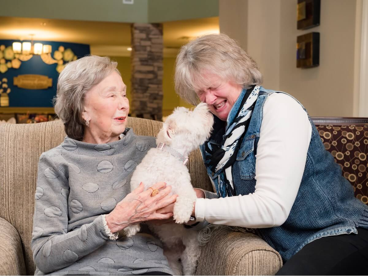 small white dog licking woman's nose while another woman watches