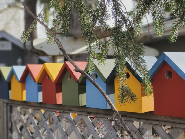 colourful bird houses in Regina's Cathedral area