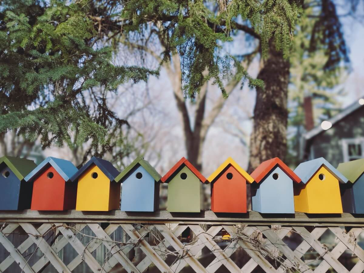 multi-coloured wooden birdhouses on a fence in Regina's Cathedral community