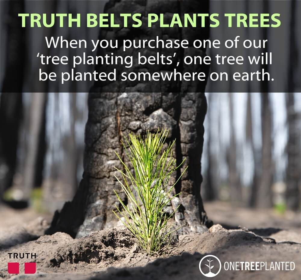 young sapling in a forest, planted by truth belts, saving the planet