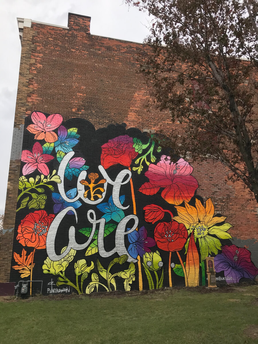 graffiti buffalo art of colourful flowers and the words we are