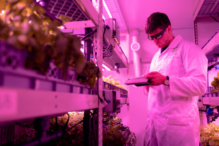 scientist in food lab under pink lights supported by virtual cultivator event