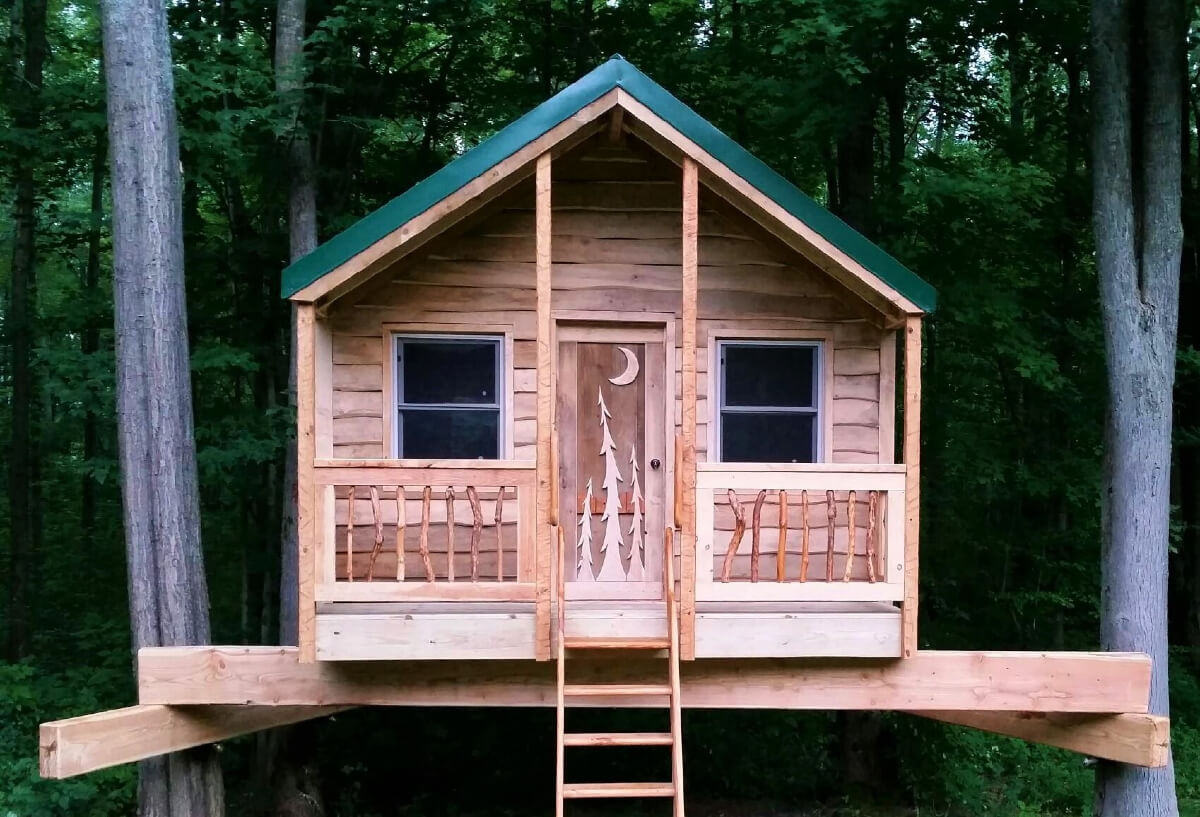 a buffalo treehouse with ladder and green roof