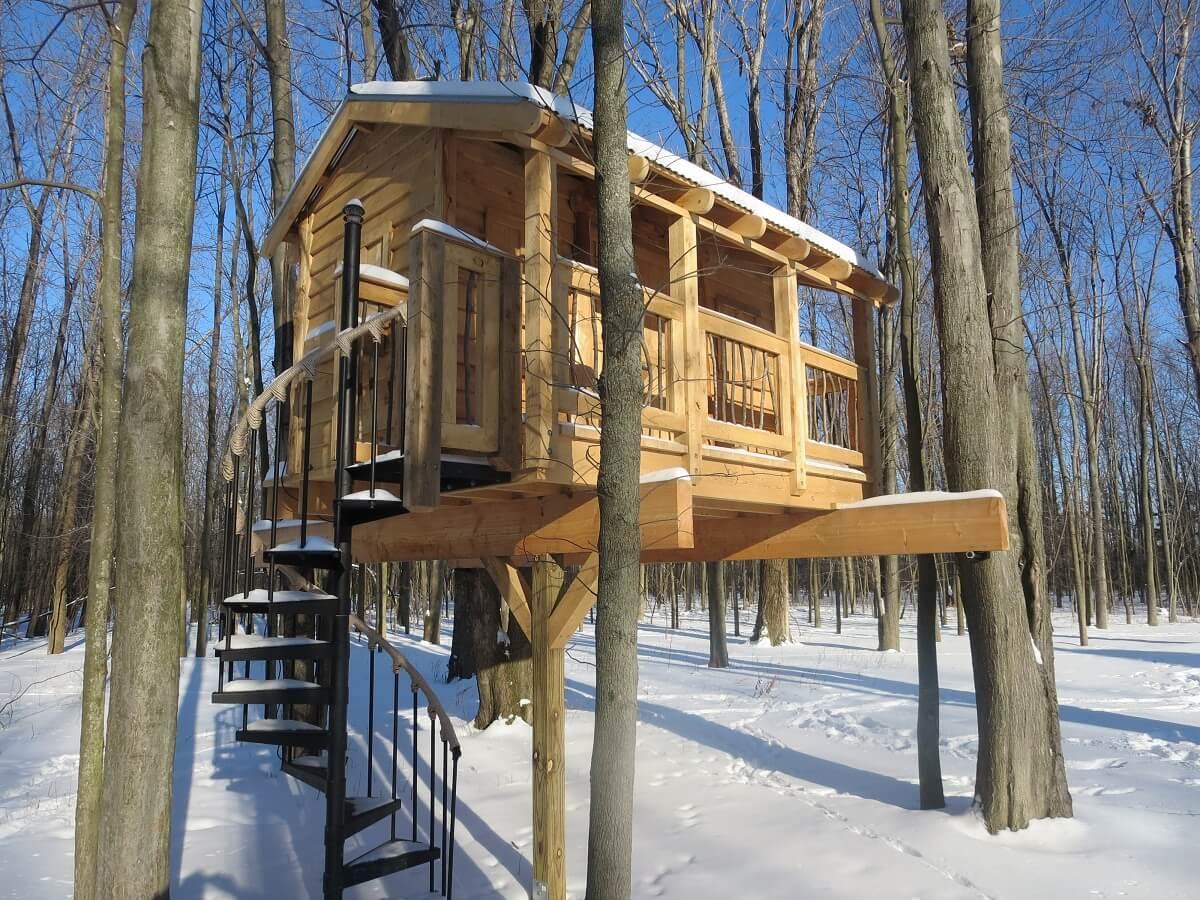 a buffalo treehouse in winter