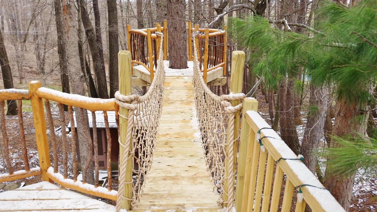 a suspended bridge outside a buffalo treehouse