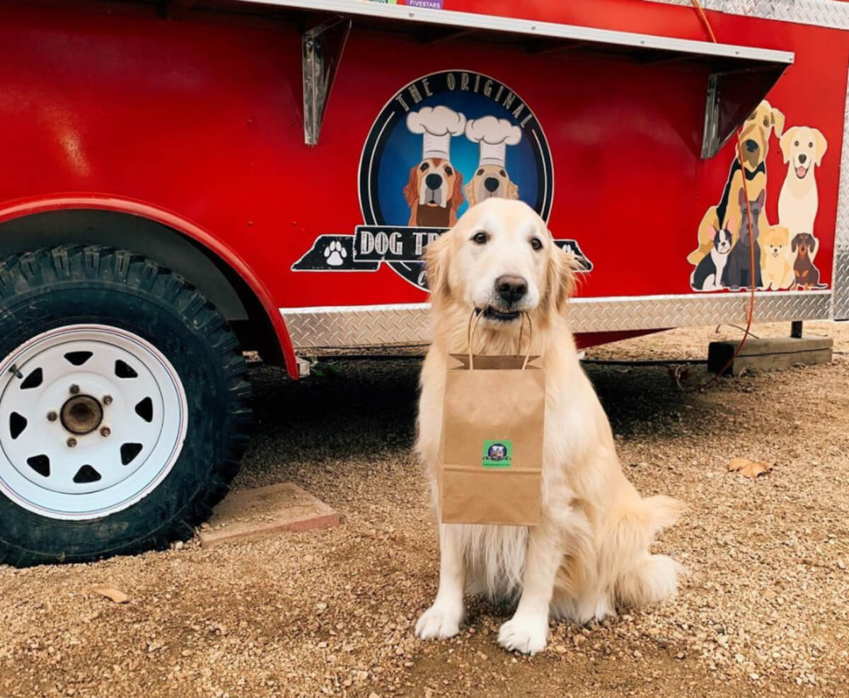 delivery dog lilly sitting in front of a red vehicle